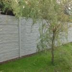 Betonový plot vedoucí kolem vrby.